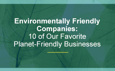 Environmentally Friendly Companies: 10 of Our Favorite Planet-Friendly Businesses